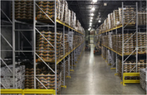 Pero Vegetable Company warehouse